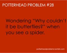"""Why spiders? Why can't we just follow the butterflys? haha only my friend samantha will know this next saying """"bloobs"""""""