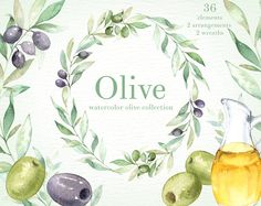 Olive Watercolor Clipart, Green leaf, Hand painting olive art,Laurel wreath, DIY invites, Wedding Invitations, Rustic, Instant download