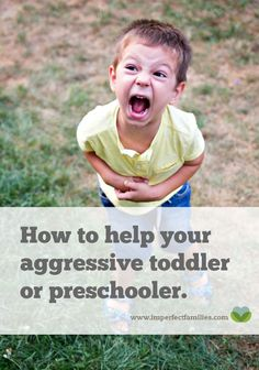 Is your Toddler or Preschooler Hitting, Kicking, Biting? These signs of aggression are actually cries for help. Use these 3 tips to help your child manage their big feelings. Gentle Parenting, Parenting Advice, Parenting Classes, Parenting Styles, Practical Parenting, Mom Advice, Toddler Aggression, Parents, Behance