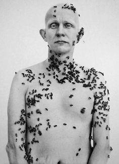 Ronald Fischer, Beekeeper,  Davis, California, May 9, 1981,  photograph by Richard Avedon