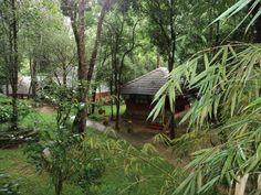 Step up n enjoy in the luxury honeymoon resort Kerala