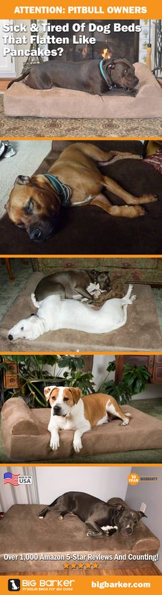 Pit Bull dog beds by Big Barker... America's most luxurious dog bed for big dogs like the Pit Bull | See more pictures at http://bigbarker.com