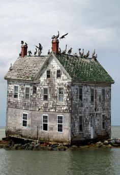 Old House On An Island - abandoned house. Old Abandoned Buildings, Abandoned Property, Abandoned Mansions, Old Buildings, Abandoned Places, Photo Post Mortem, Beautiful Buildings, Beautiful Places, Beautiful Ruins