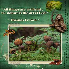 Nature - a art of God . pict. made by my niece Henny free to use