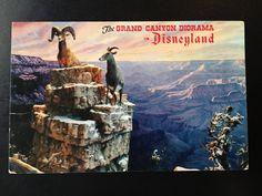 Vintage Main Street U.S.A. Postcard - The Grand Canyon Diorama - Santa Fe and Disney Railroad - Big Horned Sheep by VintageDisneyana on Etsy