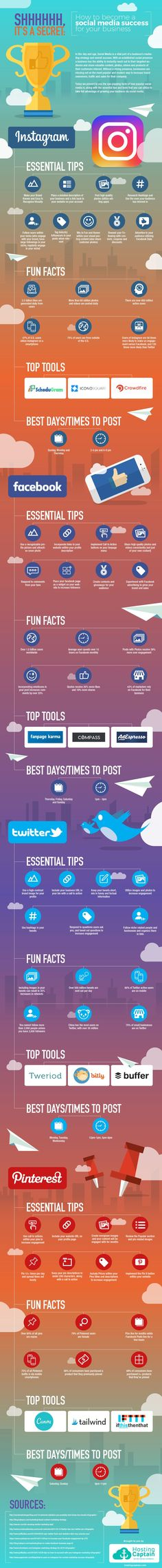 +How+to+Feel+Like+a+Social+Media+Professional+(Infographic)