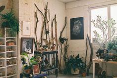 nature dans la maison