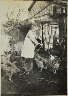The Chicken Lady 1918 Photo Photography Original Photo Collectible. Antique Photos, Vintage Pictures, Old Pictures, Vintage Images, Old Photos, Chicken Coop Decor, Chicken Lady, Vintage Farm, Vintage Paper