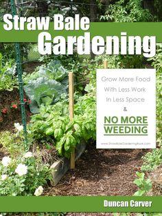 Gardening soiless gardening hydroponics on pinterest how to grow gardening and straw bale - Weeding garden make work easier ...