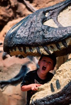 Planning a Dino Day at Disney's Animal Kingdom - Undercover Tourist - Blog