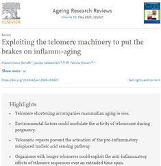 Exploiting the telomere machinery to put the brakes on inflamm-aging In Vivo, Environmental Factors, Omega, Science, Science Comics