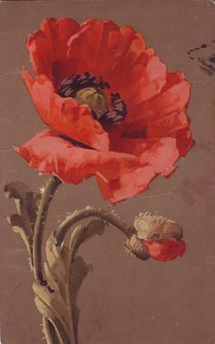 Poppy painting for living room