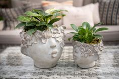 At West Coast Gardens online or in-store (Surrey BC) www.westcoastgardens.ca Adorable leaf-sprite planters that look like they came from a whimsical fairy garden! We love these cement pots, especially with lush green foliage sprouting from the top. Beautiful for the front entry, bedroom or as a magical accent anywhere in your home. #indoorplants Garden Online, Cement Pots, Patio Planters, Garden Oasis, Planter Ideas, Nature Decor, Front Entry, Lush Green, Outdoor Plants