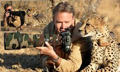 Amazing moment a cheetah lies down next to a photographer