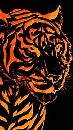 19 Best 3d Wallpapers Images 3d Wallpaper Tiger Wallpaper Wild