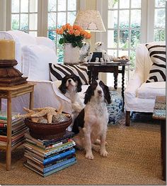 you have to rent the two dogs to complete this gorgeous living area