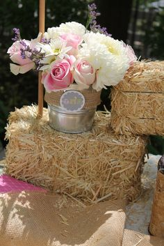 """Vintage Girly Western Petting Zoo / Birthday """"Ruby's 1st Birthday.. Petting Zoo Theme"""" 
