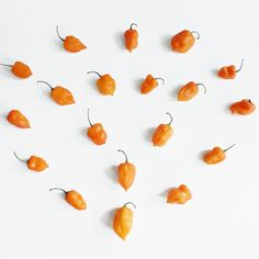 The love affair with #HotSauces, started with the wonderful flavor of the habanero pepper.  Order online by clicking on the image.  #JonnyHetheringtonEssentials #hotsauce #habanerosauce #habanero #spicy #hot #ArtOfDining #Vancouver #cooking #chef #food #foodporn #yummy #yum #savor #orange #eater #picoftheday #heat #foodstagram #heart #foodphotography #foodstyling #instafood