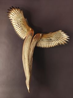 Jason Tennant | 'Nike Of The Forest'.  Nature inspired wood sculputres.