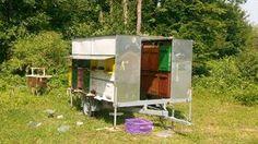 Bee Keeping, The Originals, Outdoor Decor, Bee Hives, Honey Bees, Drones, Queens, Houses, Science