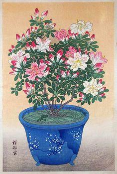 Azalea in Bowl, Ohara Koson