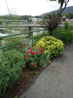 Bridge of Flowers, Shelburne Falls, Massachusetts, July 2017, USA photography by cityhopper2