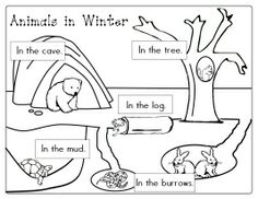 animals in winter book activities | Animals In Winter Printables! - ... | Kindergarten / January Ideas