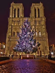 Christmas tree at Notre Dame Cathedral in Paris, France.