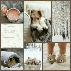 Winter, quiet time, heart. Cold reminds quickly, time to store up hope, find warm retreats, and dream of the coming spring.