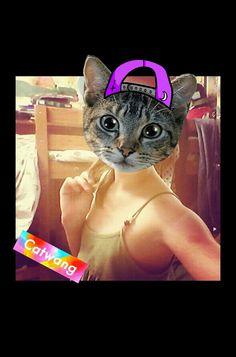 Сегодня Кошка