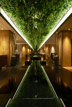 Green Belt Lounge _ Moonlit Garden Wuxi