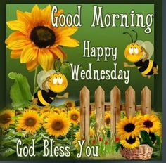 Have a bee-utiful day. Happy Wednesday Quotes, Wednesday Morning, Happy Quotes, Good Morning Happy, Happy Day, Bee Quotes, Cartoon Bee, Good Night Quotes, Bee Happy