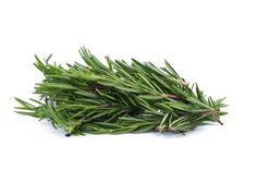 rosemary herbs and medicinal herbs organic healing herbs fresh bunch