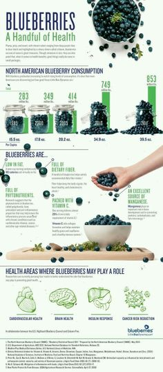 ..the beauty of blueberries..