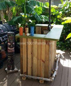 Backyard BBQ Tiki Bar