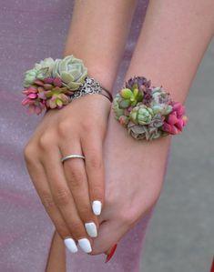 Succulent Cuff Corsage Bracelet - Live - Wedding Succulent Favors for Sale Bulk Succulents