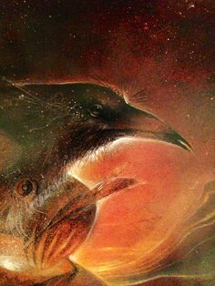 Raven - Susan Seddon Boulet