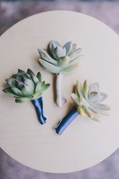 succulent boutonnieres, photo by Edyta Szyszlo http://ruffledblog.com/allied-arts-guild-wedding #grooms #succulents