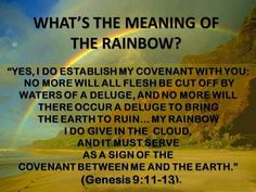 What's the meaning of the rainbow? a promise from Jehovah our God that He will never flood the Earth again. So stop using it to represent immoral things God disapproves of.