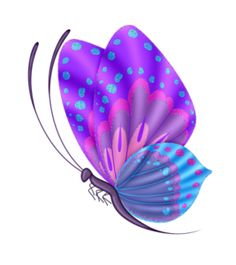 Butterfly 1.png