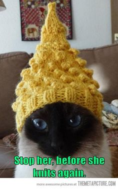 My sister, when she knits things for my pets. LOL