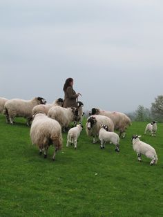Country Women, Country Life, Sheep Farm, Counting Sheep, Lord Is My Shepherd, New Testament, Pilgrimage, Nursery Rhymes, Lamb