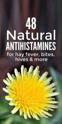 Home Health Remedies, Natural Health Remedies, Natural Cures, Herbal Remedies, Natural Healing, Holistic Healing, Herbs For Health, Health And Wellness, Health Diet