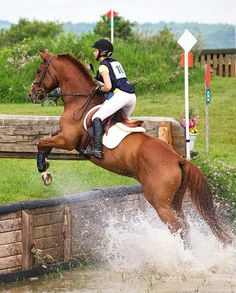 Water jump - I would love to learn three day eventing!