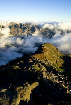 Vista desde / view from: Pico Palmero Caldera de Taburiene N.P.   Sta Cruz de Tenerife  Spain