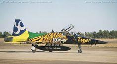 MILAVIA Air Forces - Brazilian Air Force (Força Aérea Brasileira) - F-5E/F Tiger II photo gallery