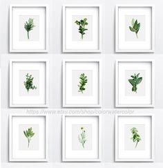 Kräuter-Set 9 Giclee Kunstdruck, Aquarell Poster, botanische Kunst, abstrakte Kunst, Gewürze Diagramm