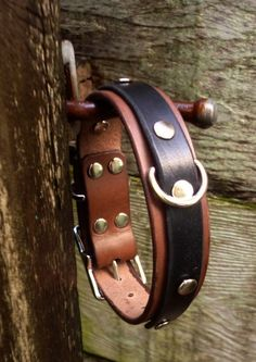 Two Toned Leather Collar Leather Dog Collar with Two by KinCollars