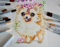 What does the Pom say? by Lighane
