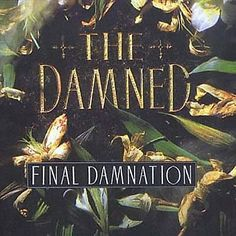 I just used Shazam to discover Neat Neat Neat by The Damned. http://shz.am/t412596